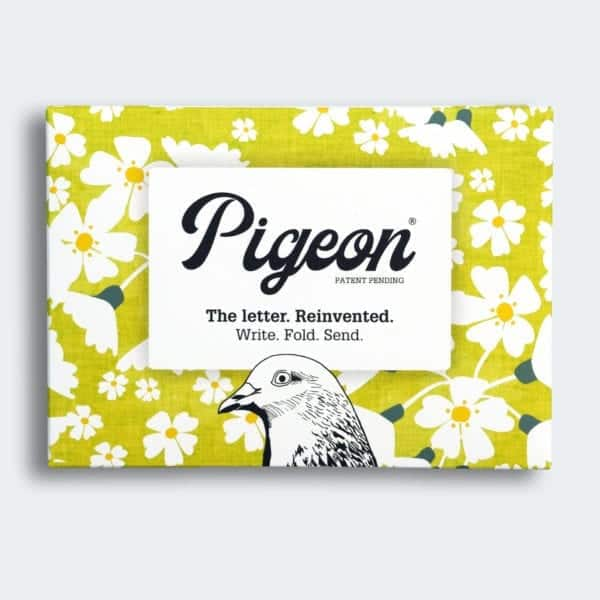 Home Pigeon